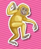 Gibbon — Stock Vector