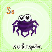 Flashcard letter S is for spider. — Stock Vector