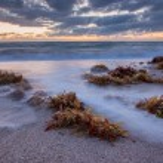 Sunrise over Atlantic Ocean in Florida. — Stock Photo #58403421