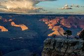 Grand Canyon at sunset — Stock fotografie