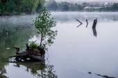 Misty morning on a small river in russia. — Stock Photo