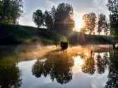 Foggy morning on a small river in russia. — Stock Photo