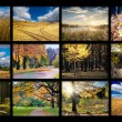 Autumn photos — Stock Photo #58442431