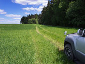 Road through field. — Stock Photo