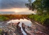 Puddle on  road — Stock Photo