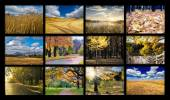 Autumn photos — Stock Photo
