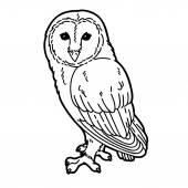 Cute owl. — Stock Vector