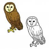 Funny owl. — Stock Vector