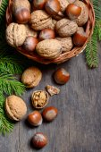 Walnuts and hazelnuts — Stock Photo