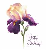 Greeting card Happy Birthday with watercolor iris flower — Stock Vector
