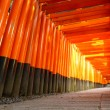 Torii gates in Fushimi Inari Shrine, Kyoto, Japan — Stock Photo #60237801