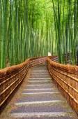 Путь к бамбуковый лес, Арасияма, Киото, Япония — Стоковое фото