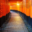 Torii gates in Fushimi Inari Shrine, Kyoto, Japan — Stock Photo #70799587