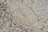 Cracked concrete texture closeup background. — Stock Photo