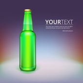 Beer bottle isolated on background. — Stock Vector