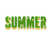 Word Summer with green leaves — Stock Vector