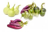 Mix vegetable: Bottle Gourd,Cockroach Berry, Eggplant and Young  — Stock Photo