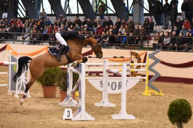 International Jumping Competition