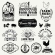 Farm logotypes set. Retro Farm Fresh labels, logos, badges, icons, objects and elements. — Stock Vector #76103293