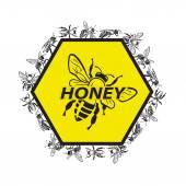 Bee och honung — Stockvektor