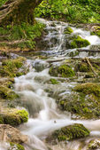 Stream of Water in Plitvice Lakes National Park — Stock Photo