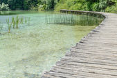 Wooden Boardwalk  for Hiking next to a Lake — Stock Photo