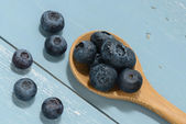 Blueberries on a Wooden Spoon — Stock Photo