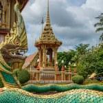 Dragon at Wat Chalong in Phuket — Stock Photo #58831799