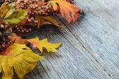 осенние листья и ягоды для дня благодарения — Стоковое фото
