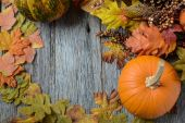 Pumpkin and Fall Leaves — Stock Photo