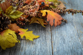 Autumn leaves and berries for Thanksgiving day — Φωτογραφία Αρχείου