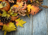 Autumn leaves and berries for Thanksgiving day — 图库照片