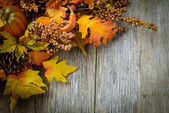 Autumn leaves and berries for Thanksgiving day — Foto de Stock