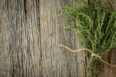 Branch of Thyme — Stock Photo