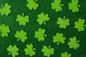 Green Clovers or Shamrocks — Stock Photo