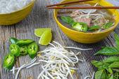 Pho Vietnamese beef soup — Stock fotografie