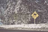 Winter Storm Warning Sign with Vintage Film Effect — Stock Photo