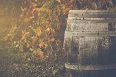 Wine Barrel outside — Stock Photo