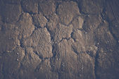 Dirt Background  Style — Stock Photo