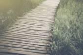 Bridge in Forest — Stock Photo