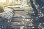Hiking Trail with Sunlight — Stock Photo