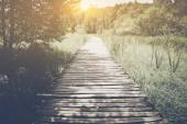 Hiking Path with Sunlight — Stock Photo