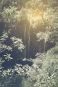 Retro Waterfall with Sunlight — Stock Photo
