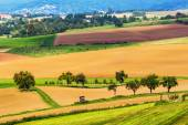 Golden and green late summer landscape in Hesse, Germany — Stock Photo