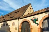 Princely stables with frog sculpture, Castle Buedingen, Germany — Stock Photo