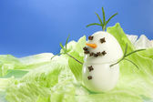 Snowman gourmet — Stock Photo