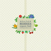Banner with fresh berries and fruits. Concept organic food — Wektor stockowy