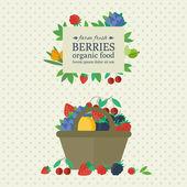 Banner s plody a ovoce. Koncepce ekologické potraviny — Stock vektor