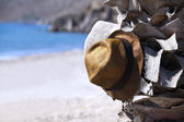 Two hats on the palm tree — Stock Photo