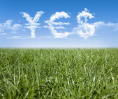 Grass Clouds and Money — Stock Photo